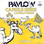 camels here camels there, pavlov